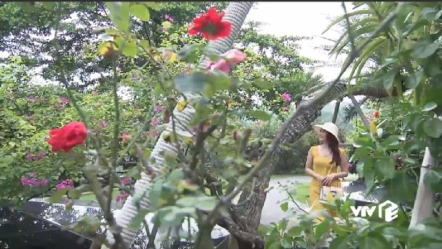 6 lí do Flamingo Đại Lải Resort được chọn làm bối cảnh ngoại truyện 'Về nhà đi con'